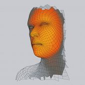 Head Of The Person From A 3d Grid. Human Head Wire Model. Face Scanning. View Of Human Head. 3d Geom poster