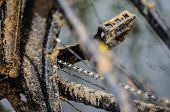 A Bicycle In The Mud. Elements Of A Mountain Bike Frame Covered With Mud After Riding In Bad Weather poster