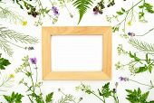 Herbal Botany Decorative Rustic Background With A Frame, Flat Lay Composition, Space For A Text poster