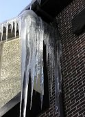 Icicles - 1
