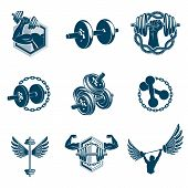 Vector Weightlifting Theme Illustrations Collection Made Using Dumbbells, Barbells And Disc Weights  poster