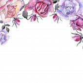 Pink Rose. Floral Botanical Flower. Frame Border Ornament Square. Aquarelle Wildflower For Backgroun poster