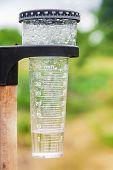 Meteorology With Rain Gauge In Garden poster