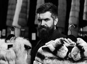 Elegance And Glamour Concept. Customer With Beard Chooses Furry Coats. Man With Strict Face Holds Fu poster