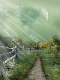 stock photo of fantasy landscape  - magical passage in the forest with ligth - JPG