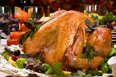 picture of turkey dinner  - Garnished roasted turkey on holiday decorated table with pumpkins and glasses of red wine - JPG