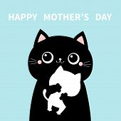 Mother Cat Holding Hugging Little Baby Kitten. Happy Mothers Day. Kittens On Hands. Kitty Hug. Funny poster