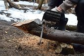 A Man Saws A Log With An Electric Chain Saw For The Purpose Of Harvesting Firewood. poster