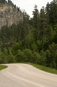 Road In Spearfish Canyon