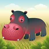 baby Animal Sammlung: Hippo