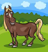 Horse Farm Animal Cartoon Illustration