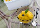 Fresh Home Made Mango Ice Sorbet