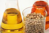 stock photo of ethanol  - Ethanol oil and fuel produce by soy seeds - JPG