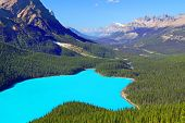 Peyto Lake Banff National Park
