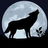 stock photo of wolf moon  - The black silhouette of a wolf on a background of the moon - JPG