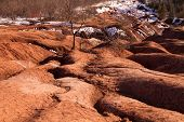 picture of rich soil  - A badlands   - JPG