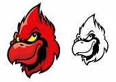stock photo of songbird  - Red cardinal bird head in cartoon style for sports mascot design - JPG
