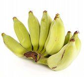 Raw Banana On White Background