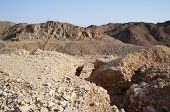 Wadi Shahamon, Eilat