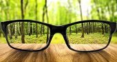 stock photo of distortion  - Clear forest in glasses on the background of blurred forest - JPG