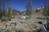 Ghost_town_cemetary_img_0385
