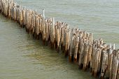 Old Bamboo Fence Protect Sandbank From Sea Wave