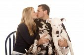 Family Kiss Sit Dogs