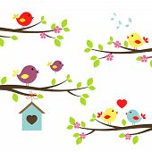 picture of bird-nest  - Set of colorful birds on flowering branches in a spring garden tweeting  singinging  in love and teaching a fledgling to fly above a nesting box  vector illustration on white - JPG