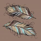 Vintage ethnic vector Feathers