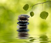 Balancing Stones In Water And Green Branch