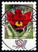 Postage Stamp Germany 2012 Pasque Flower, Flowering Plant