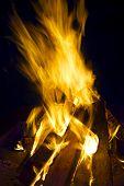 Log Fire.