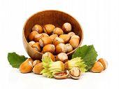 Fresh Hazelnuts In Wooden Pot