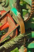 image of grass-cutter  - lawnmower grass cutting machinery blades and roller - JPG