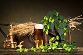 pic of spigot  - glass of beer with raw material for beer production - JPG