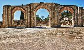 Arabic Arches