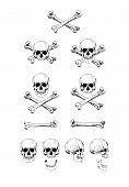 Vector set of skulls, black contour