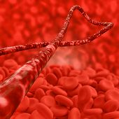 stock photo of red-blood-cell  - Ebola virus and red blood cells  - JPG