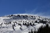 pic of windy  - Winter Carpathian Mountains at sun windy day - JPG