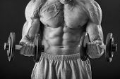 picture of dumbbell  - Dumbbell exercises - JPG