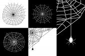 image of cobweb  - Set of vector cobweb or spider web silhouettes - JPG