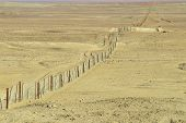 image of sheep-dog  - Dingoe fence in the Australian Outback - JPG