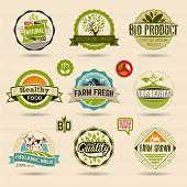 stock photo of ecology  - Ecology and Organic Web Icon Set - JPG