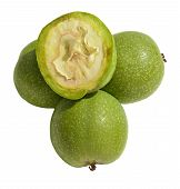 Постер, плакат: Green Young Walnuts