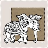 picture of indian elephant  - Elephant - JPG