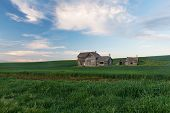picture of abandoned house  - Abandoned house and wheat fields at dusk Colton Washington - JPG