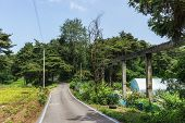 stock photo of aqueduct  - a small rural bike road near by the aqueduct and rice farm - JPG