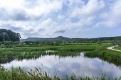 stock photo of wetland  - Gyeongpo lake park with the restored wetlands reflecting on the small river running nearby the lake - JPG