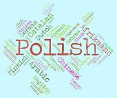 picture of dialect  - Polish Language Meaning Dialect Vocabulary And Communication - JPG
