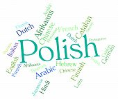 image of dialect  - Polish Language Meaning Vocabulary Word And Translator - JPG